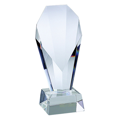 custom trophies crown